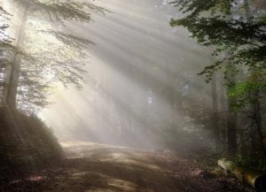 chemin lumière résurrection